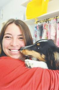 Cão Obediente, adestre seu cão Blumenau e Gaspar