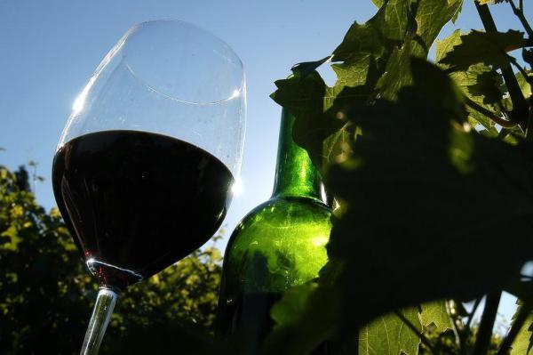 Caxias do Sul conta com 105 cantinas, sendo que 40 delas possuem engarrafamento da bebida