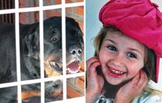 Cachorro só largou a criança após receber cinco tiros-Charles Dias, Especial