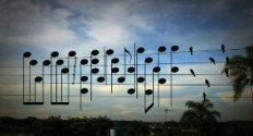 Ideia do vídeo surgiu quando artista viu foto de pássaros em cabos de eletricidade-Reprodução/Youtube