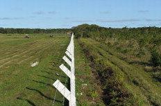 Terreno da UFSC (à direita da cerca) será trocado para a ampliação da área do aeroporto (esquerda)-Emerson Souza