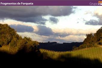 Fragmentos de Forqueta